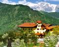Wanderurlaub und Welles mit Hund, Wellnesshotel St. Johann Alpendorf, Wellnesshotel Alpenhof Hunde willkommen!