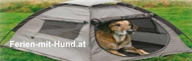 Campingplätze die Hunde erlauben, dementsprechend viele Hunde sind beim Camping mit Hund auch in Österreich